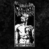 Demise - Endless Torment ++ LP
