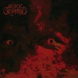 Mörk Gryning - Return Fire ++ Digi-CD